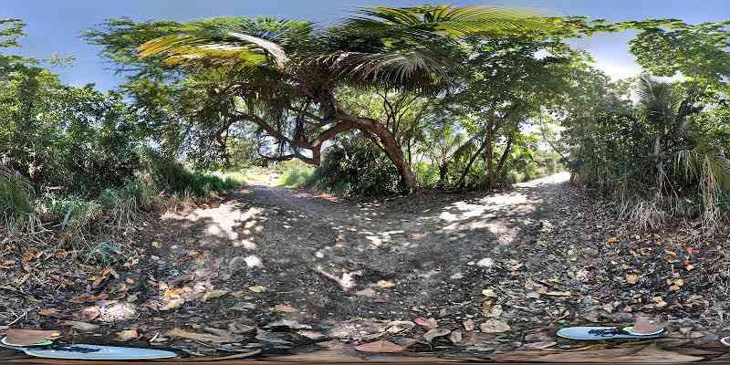 Manuel T. Ortega | Dorado Puerto Rico | 360 3D VR tours
