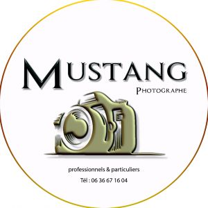 Avatar logo | Mustang Photographe | Béthune France | photographer 360 tour