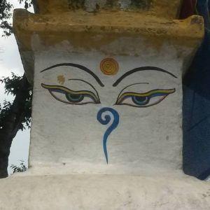 Avatar logo | Dave Pro | Saint-Pierre Reunion | photographer 360 tour