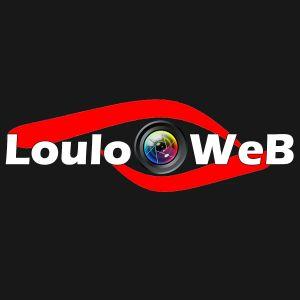 Avatar logo | LouloOWeB | Annet-sur-Marne France | 360 3D VR tours