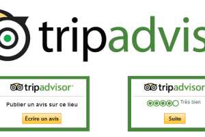 Price and cost LOCAL GUIDE GOOGLE-LVL10 Test Produit ou activit\u00e9\/Visite + avis tripadvisor