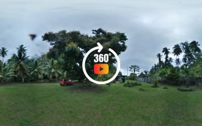 A vendre un terrain plat de 1061 M2 côté montagne à Papara-Centre.