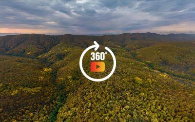 Осенний тур над грибными пригородами Краснодара