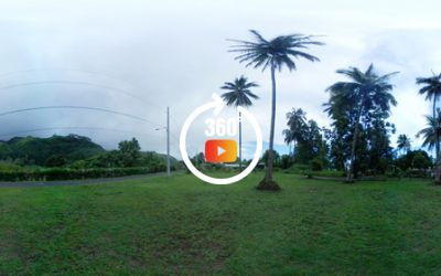 VENTE TERRAIN DE 1046M2 TAUTIRA - TAHITI